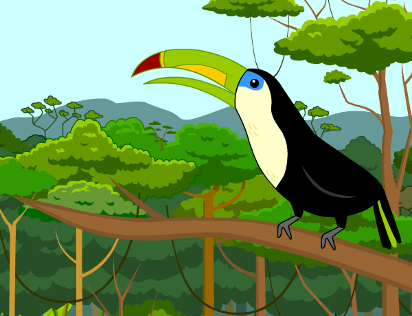 rainforests lesson plans and lesson ideas brainpop educators