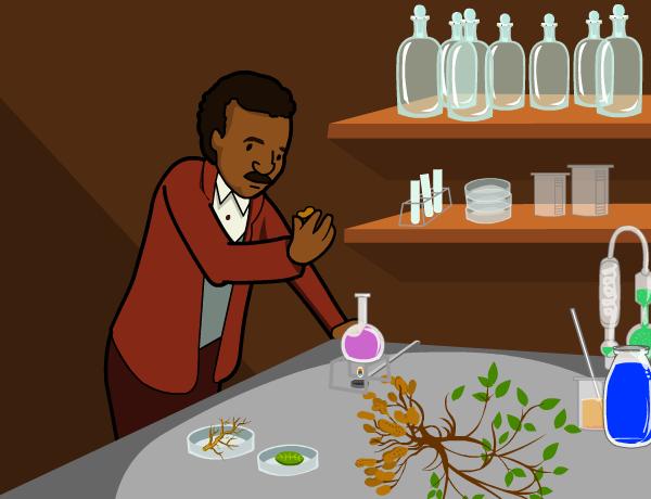 Image for George Washington Carver